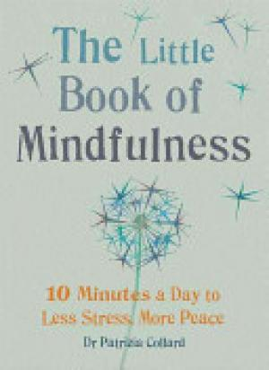 Little Book of Mindfulness Free epub Download