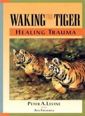 Waking the Tiger EPUB Download