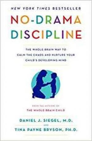 No-drama Discipline Free epub Download