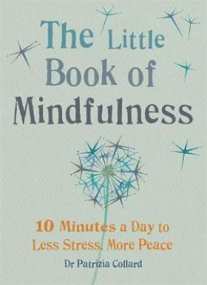 The Little Book of Mindfulness EPUB Download